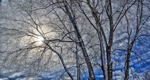 winter-41717253